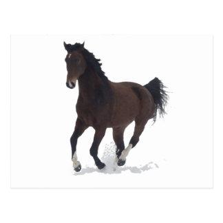 Cartão - cavalo de funcionamento