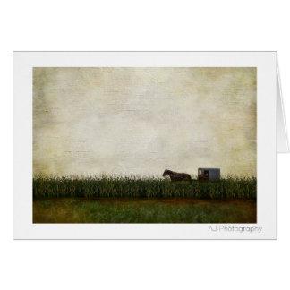 Cartão Cavalo e carrinho de Amish