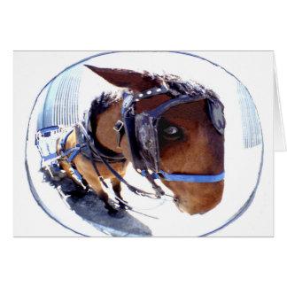 Cartão Cavalo e carruagem do Peixe-Olho