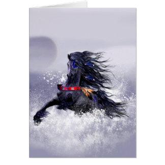 Cartão Cavalo indiano do garanhão majestoso azul preto na
