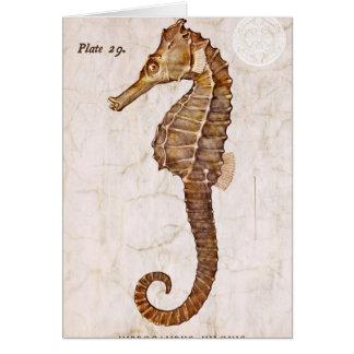 Cartão Cavalo marinho da criatura do cavalo de mar do