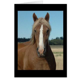 Cartão Cavalo olá!