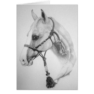 Cartão Cavalo, rodeio