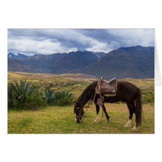 Cartão Cavalo sagrado verdejante do vale II