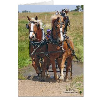Cartão Cavalos de esboço belgas