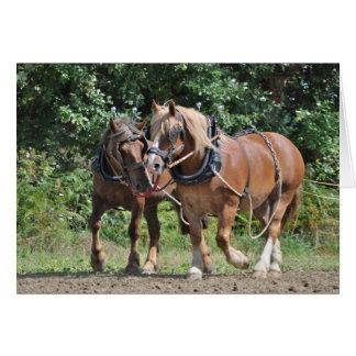 Cartão Cavalos de esboço no aniversário do chicote de