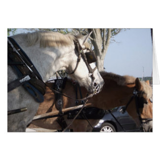 Cartão Cavalos no chicote de fios