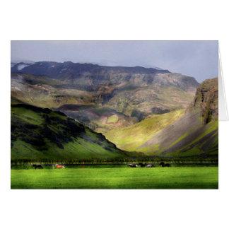 Cartão Cavalos Running Islândia