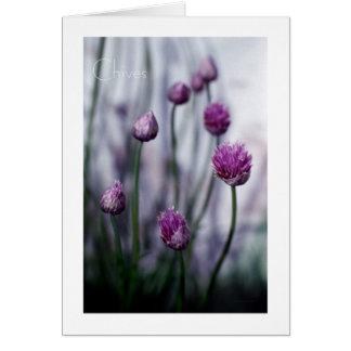 Cartão Cebolinho na flor