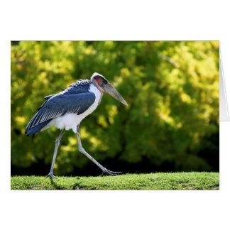 Cartão Cegonha de marabu que anda na grama