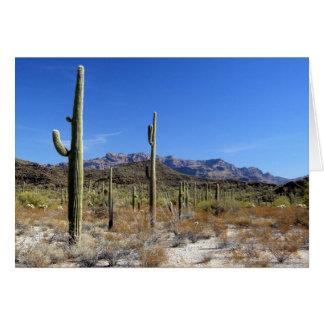 Cartão Cena 13 do deserto de Sonoran