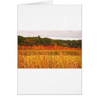 Cartão Cena da queda em grandes prados