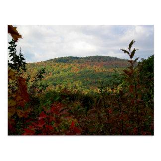 Cartão cénico da folha de Nova Inglaterra da cume