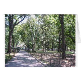 Cartão Central Park