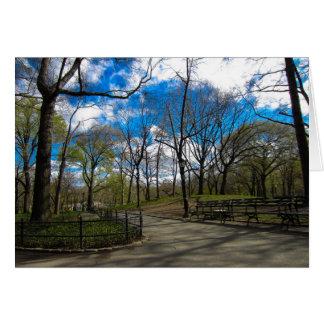 Cartão Central Park NYC
