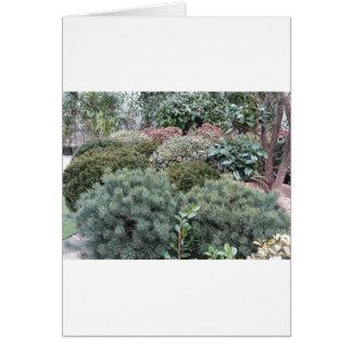 Cartão Centro de jardim com seleção de plantas de