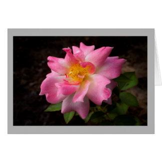Cartão Centro dourado cor-de-rosa cor-de-rosa dos