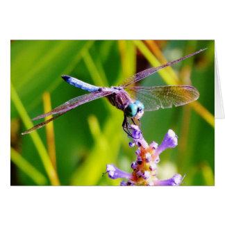 Cartão Cerceta & libélula roxa