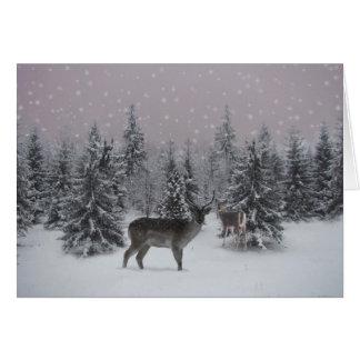 Cartão Cervos
