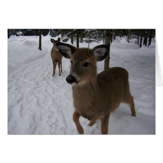 Cartão cervos amigáveis