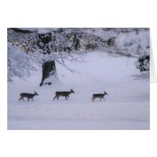 Cartão Cervos que andam no notecard da neve