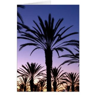 Cartão Céus da palma