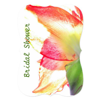 Cartão Chá de panela vermelho do abstrato do Amaryllis do