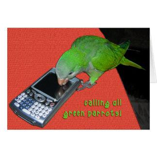 Cartão Chamando todo o papagaio verde