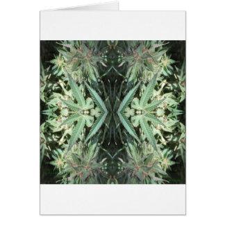 Cartão Chamas 2 do cristal