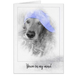 Cartão chapéu roxo no golden retriever no quadro cinzento