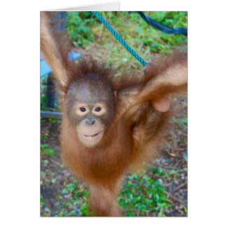 Cartão Cheerleader: Orangotango da equipe