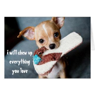 Cartão Chihuahua nova bonito do filhote de cachorro que