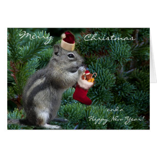 Cartão Chipmunk insolente do Natal