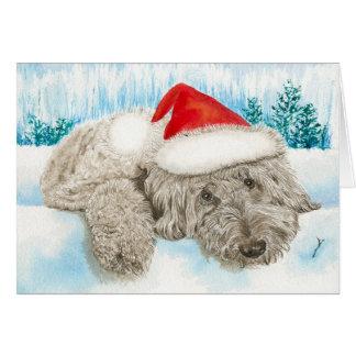 Cartão Chocolate Labradoodle do Natal