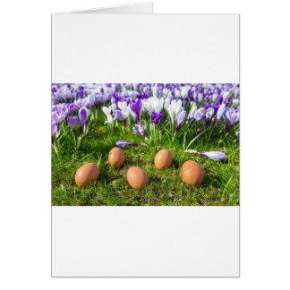 Cartão Cinco ovos fracos que encontram-se perto dos