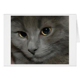 Cartão cinzento do gato