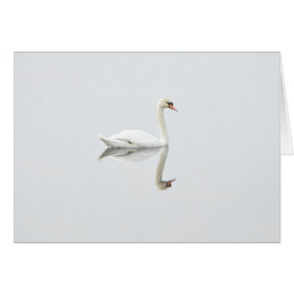 Cartão Cisne branca bonita na imagem invertida da água