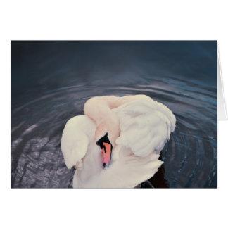 Cartão Cisne · Lago