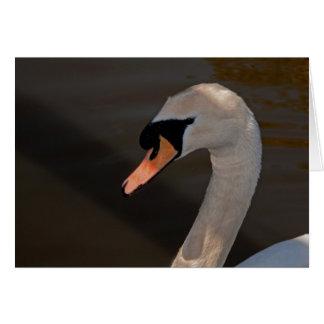 Cartão Cisne muda