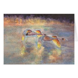 Cartão Cisnes dirigidas em casa no por do sol