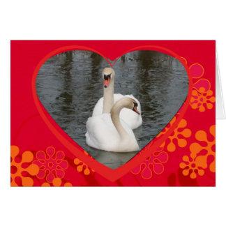 Cartão cisnes dos namorados