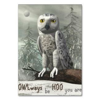 Cartão Citações brancas da coruja - 3D rendem