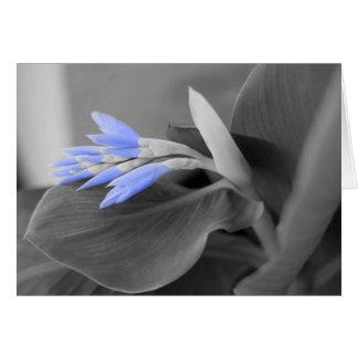 Cartão Claro personalizado - foto azul das flores em