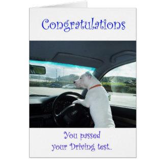 Cartão Cleo passou o teste de condução