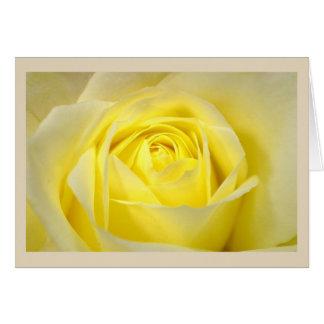 Cartão Close up do rosa amarelo