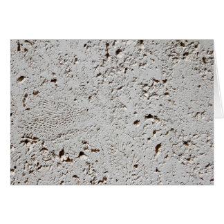 Cartão Close up fóssil da superfície do azulejo da