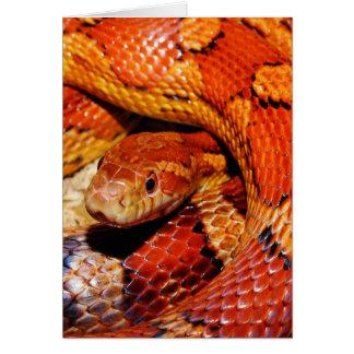 Cartão Cobra de tapete