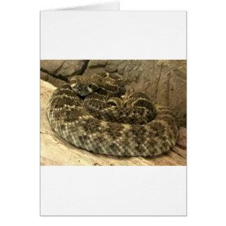 Cartão Cobra do chocalho