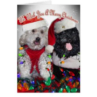 Cartão Cockapoo nós desejamos-lhe o Feliz Natal