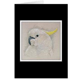 Cartão Cockatoo